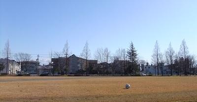 公園のボール