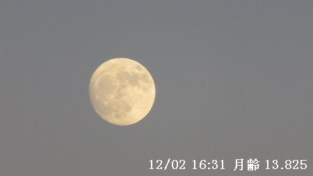 IMG_1750-450.jpg