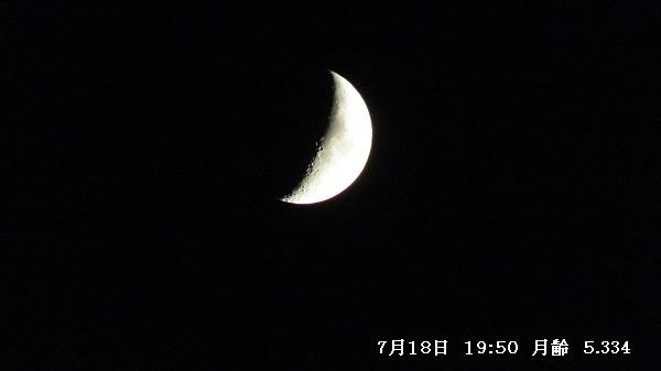 IMG_8468-600.jpg