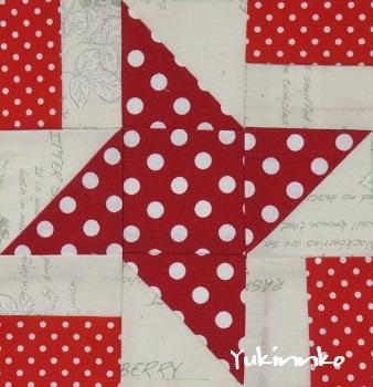 15 Shining Star.jpg