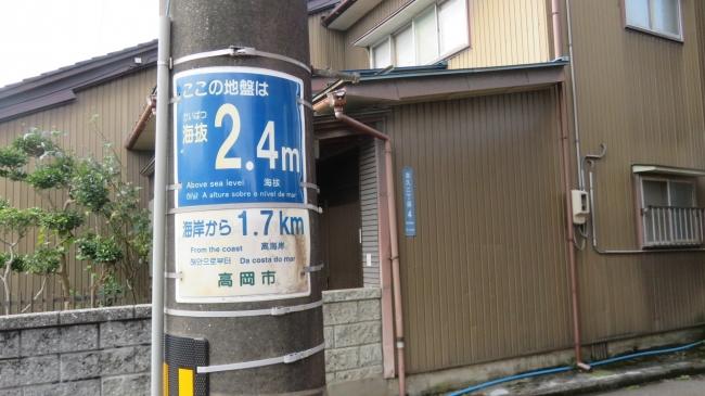 IMG_7553.JPG