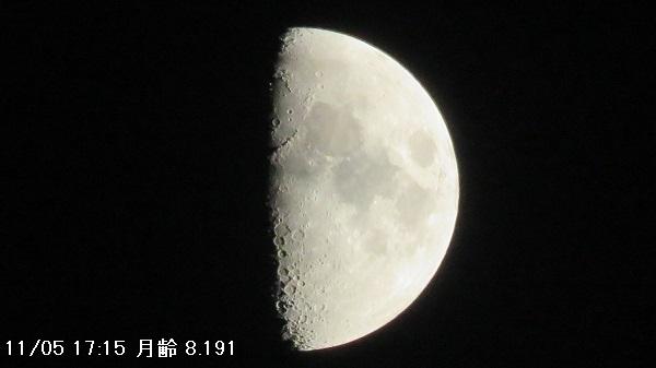IMG_7973-600.jpg