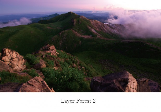 layer-forest-2.jpg
