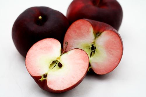 RED APPLE(レッドアップル)では 弘前大学育成新品種の果肉まで赤いりんご「紅の夢」を栽培しております