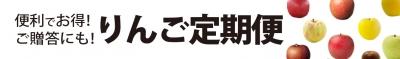 REDAPPLE 赤石農園 りんご定期便