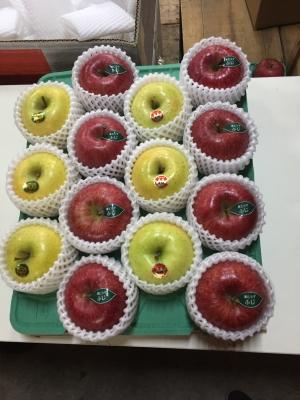 プレミアムりんご ふじ 王林 シナノゴールド