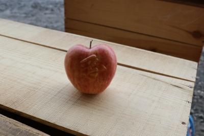 RED APPLE 赤石農園 ハート葉とらずふじりんご1