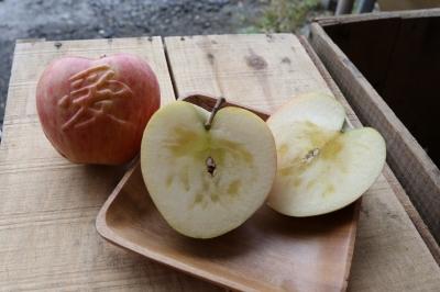 RED APPLE 赤石農園 ハート葉とらずふじりんご2