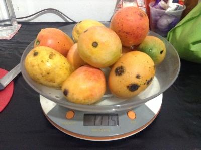 トロピカルフルーツ1