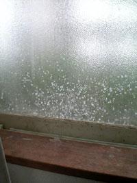 ミルク飛び散る窓