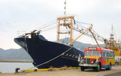 舘浦漁港で巻き網漁船と大きさ比べ