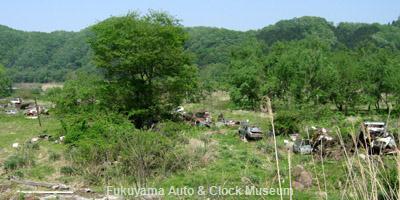 兵庫県某所にある廃車体集積地の一部