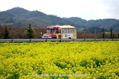 道の駅 笠岡ベイファームの菜の花畑沿いに国道2号線バイパスを行く高梁市のボンネットバス・トヨタDB100【クリックで大きく表示】