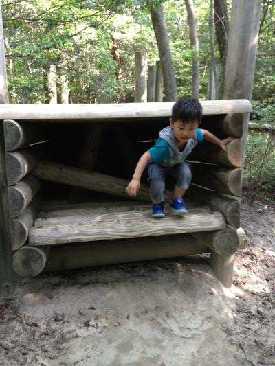 H26.6生駒山麓公園1