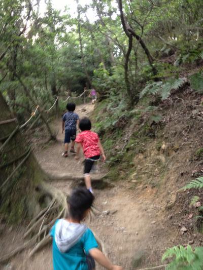 H26.6生駒山麓公園9