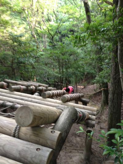 H26.6生駒山麓公園10