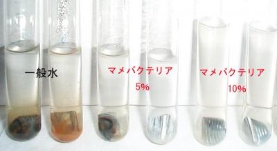 酸化防止試験結果画像