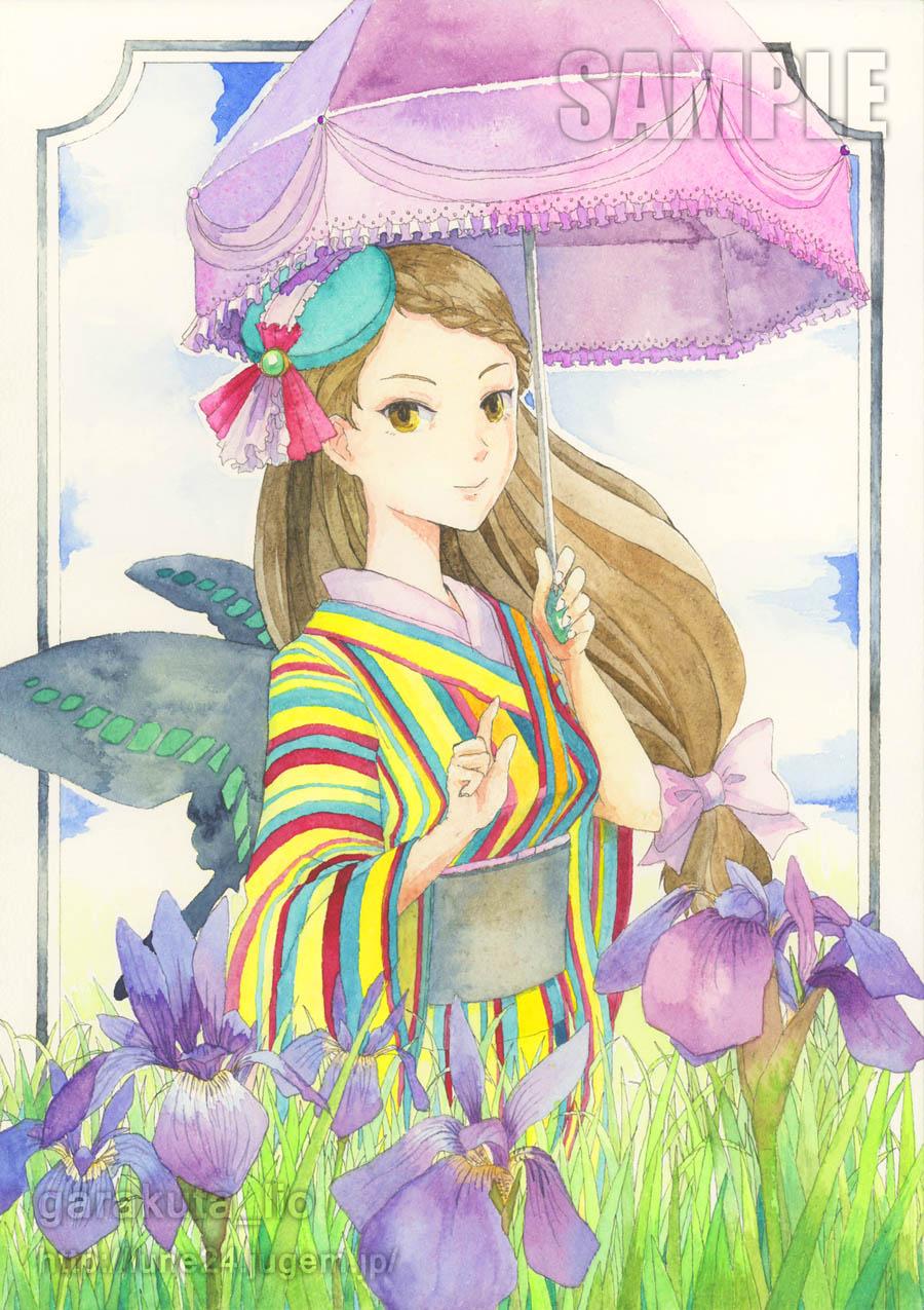 初夏の菖蒲散歩