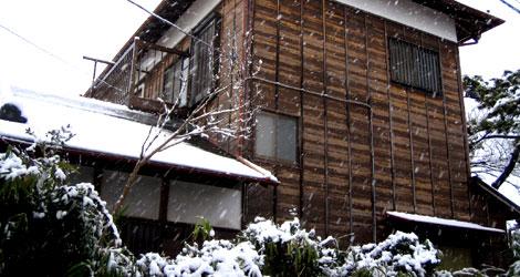 関東でも雪が降りました