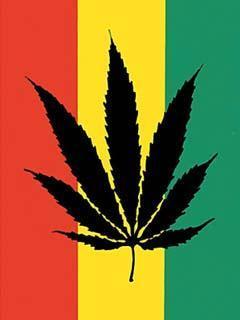 レゲエ画像,レゲエアーティスト,レゲエ,reggae,
