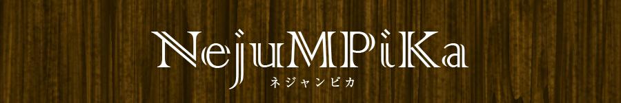 京都のアコースティック・アイリッシュ・ポップバンド nejumpika(ネジャンピカ)