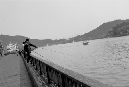 魚を釣っている人が結構います