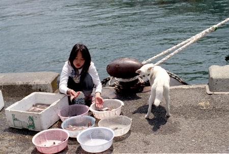 魚介類を売ってます