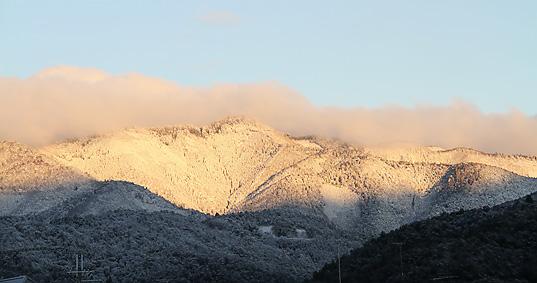 今朝の愛宕山