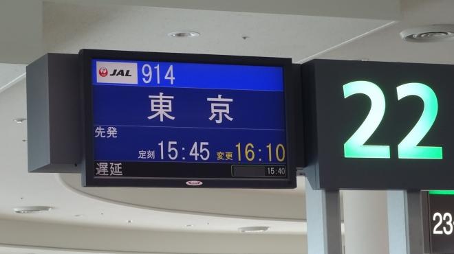 DSC02631-1.JPG