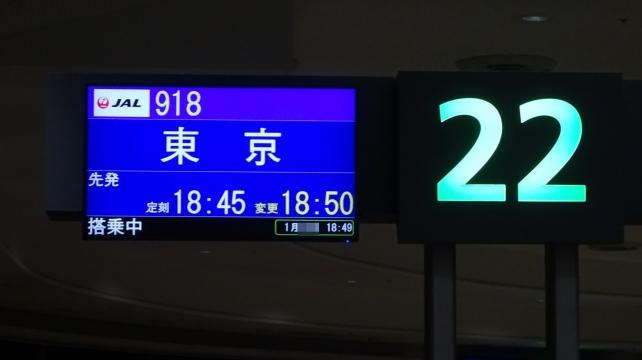 DSC08053-1.JPG