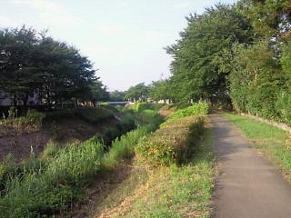 青田川の散歩