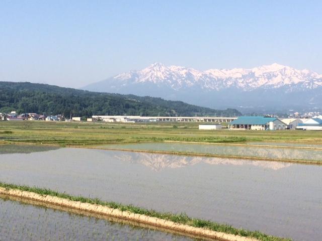 田に映る風景