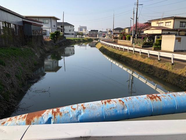 儀明川増水