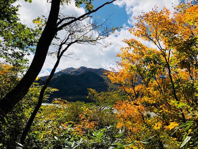 笹ヶ峰の乙女湖