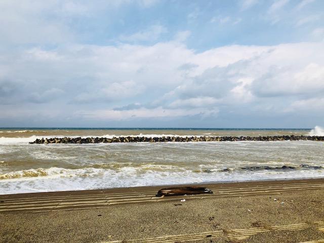 大潟区の海岸