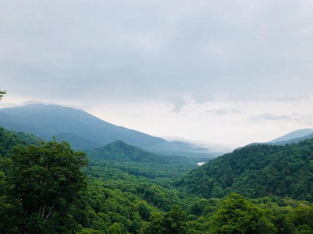 笹ヶ峰林道