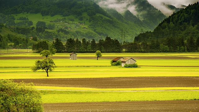 landscape-176602_640.jpg