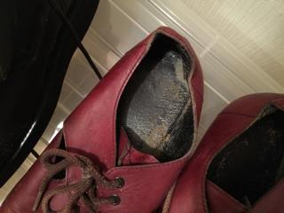 カビ 靴 手入れ