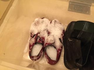 革靴 カビキラー