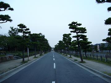 芦屋川沿いの道