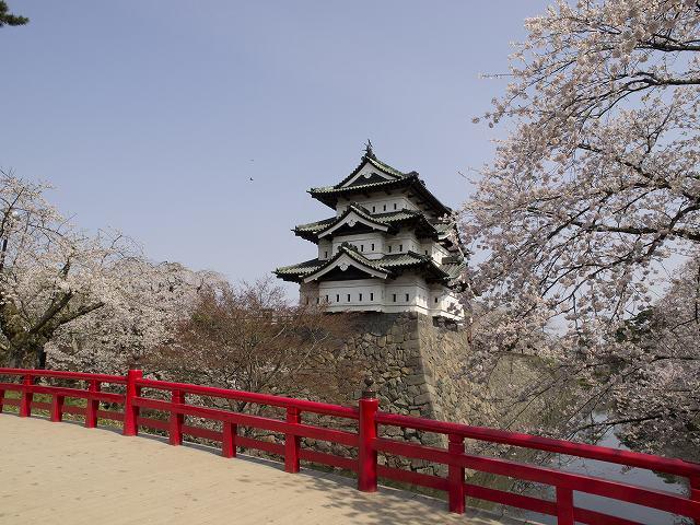 弘前城と下乗橋にかかる桜