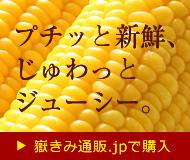 嶽きみ通販.jp