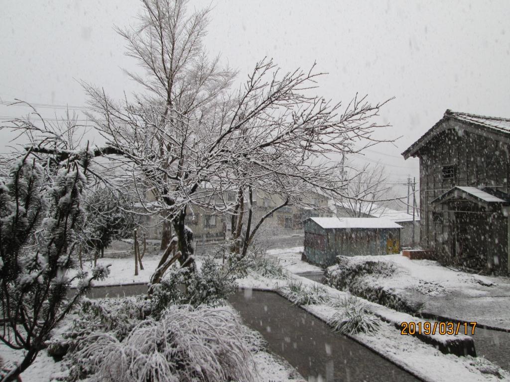 なごり 雪 と は