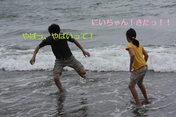 IMG_3081 - コピー.JPG