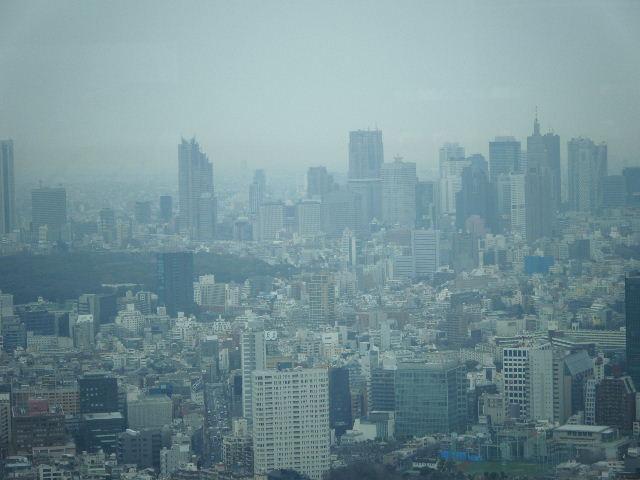東京シティビュー 新宿方面