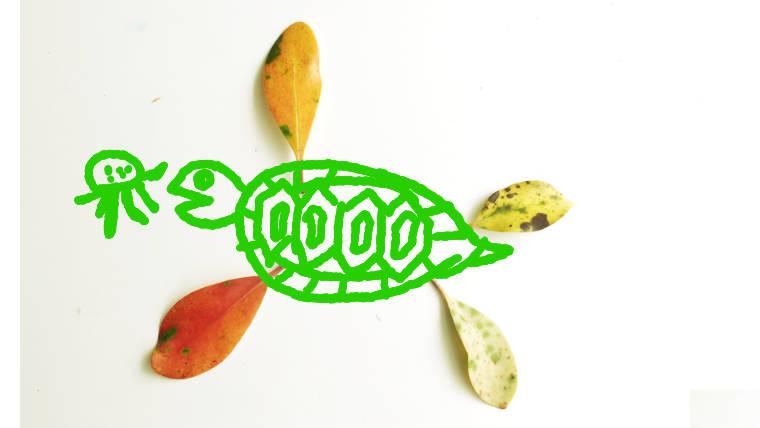 小学校受験絵画練習発展画の亀の絵