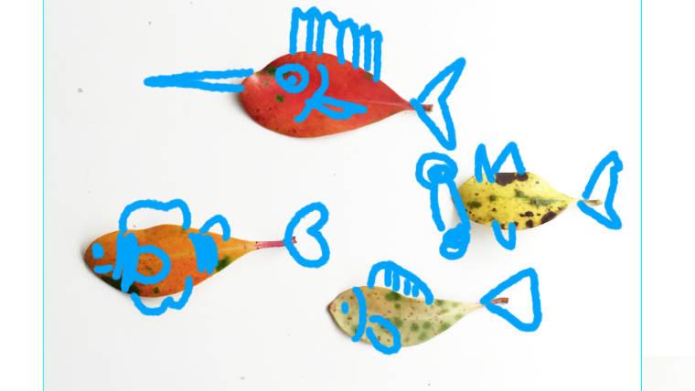 小学校受験絵画練習発展画の魚の絵