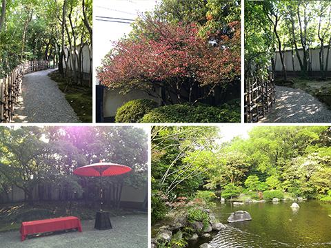 約20年ぶりに城南区の純日本式庭...