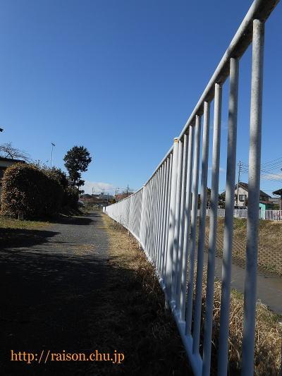 散歩コースのひとつ。
