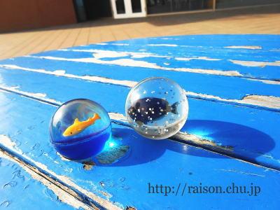 水族館のスーパーボール。